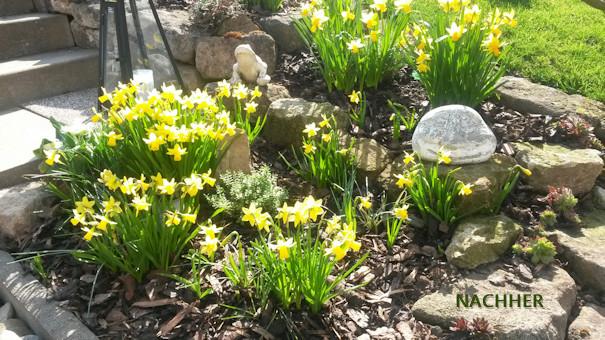 Urne zu Hause - Das Gartengrab - 0152-54017100